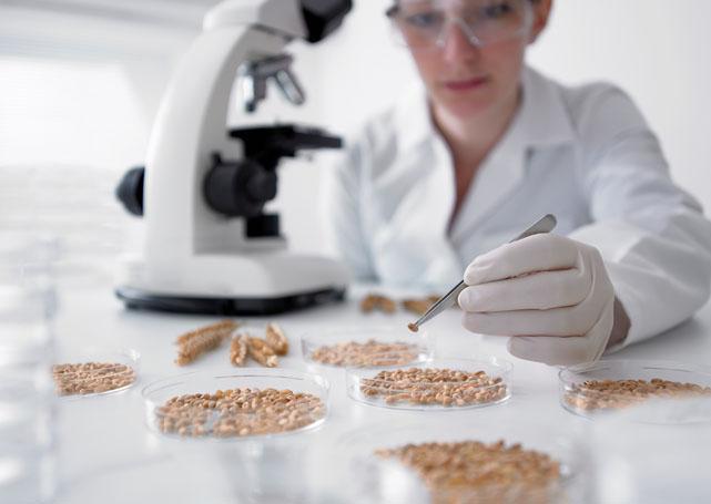 mikroskop naukowy